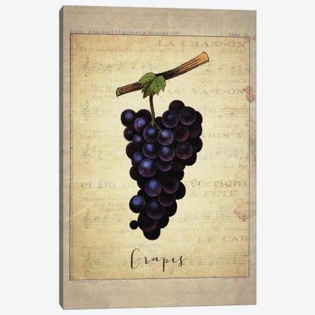 Grapes I Canvas Print #NWE32} by Natasha Wescoat Canvas Wall Art