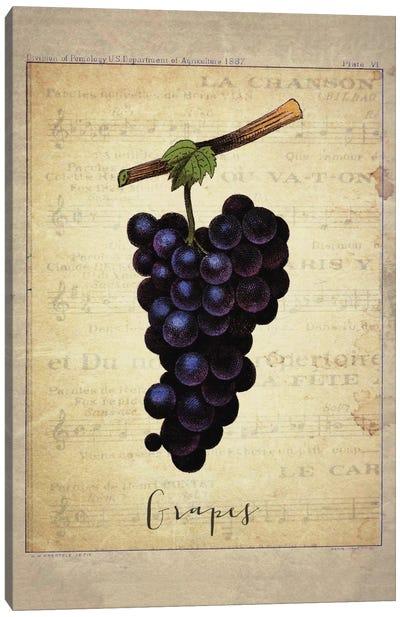 Grapes I Canvas Art Print