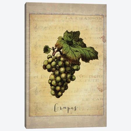 Grapes II Canvas Print #NWE33} by Natasha Wescoat Canvas Artwork