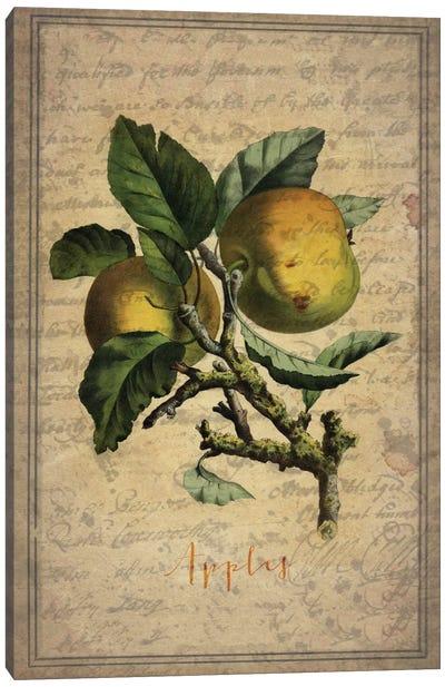 Apples Canvas Print #NWE3