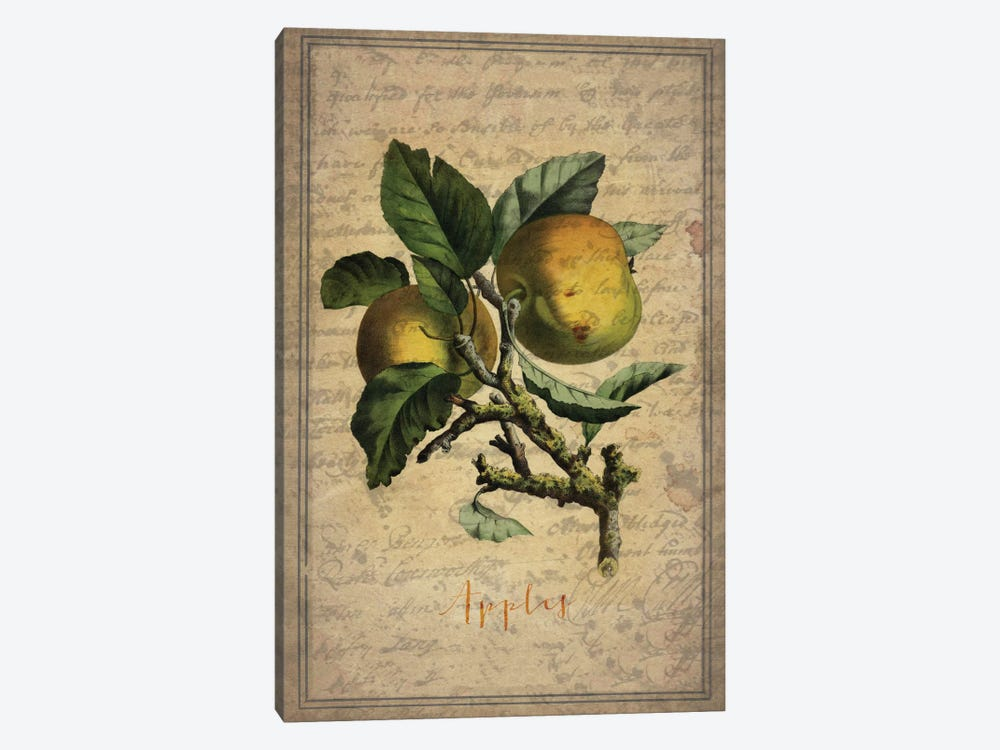 Apples by Natasha Westcoat 1-piece Canvas Wall Art