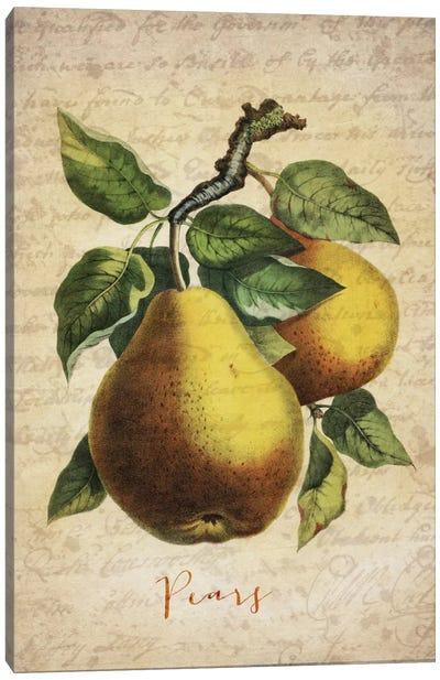 Pears Canvas Print #NWE43