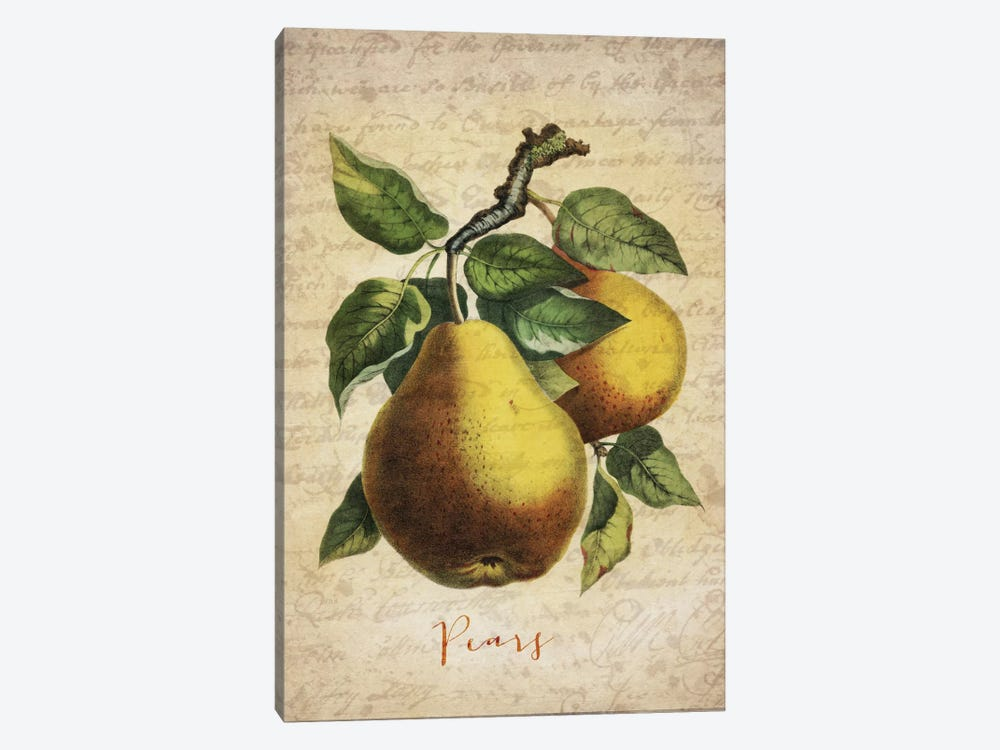 Pears 1-piece Canvas Wall Art