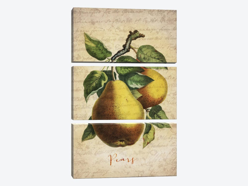 Pears 3-piece Canvas Wall Art