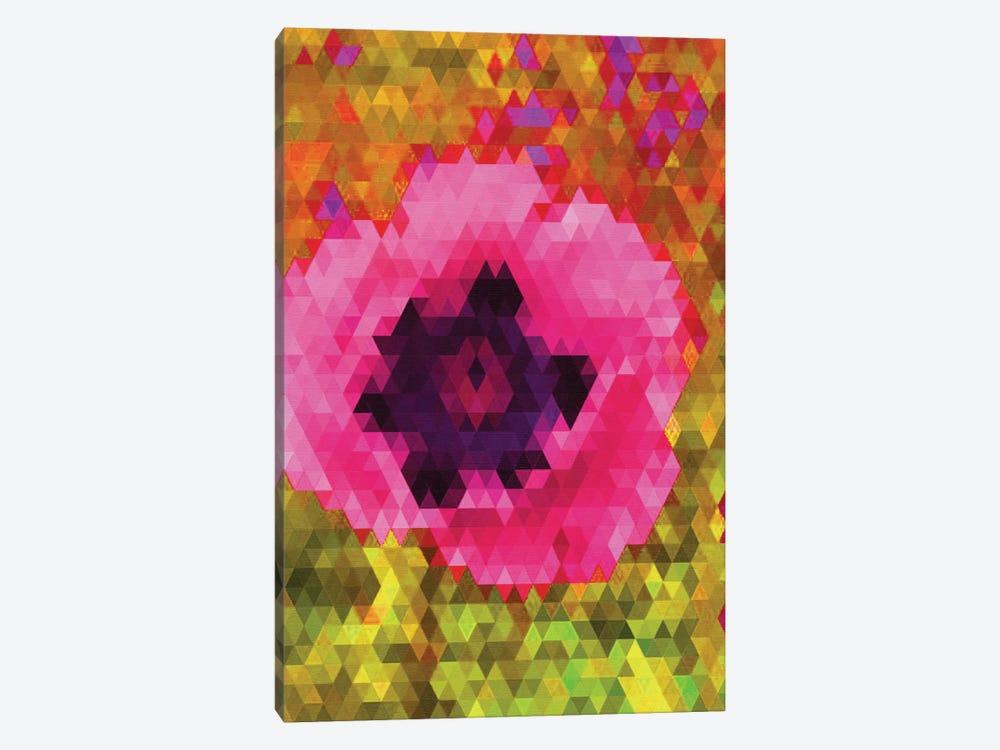 Pink Poppy by Natasha Westcoat 1-piece Canvas Art