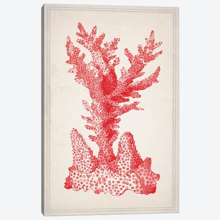 Red Coral I Canvas Print #NWE47} by Natasha Wescoat Canvas Artwork