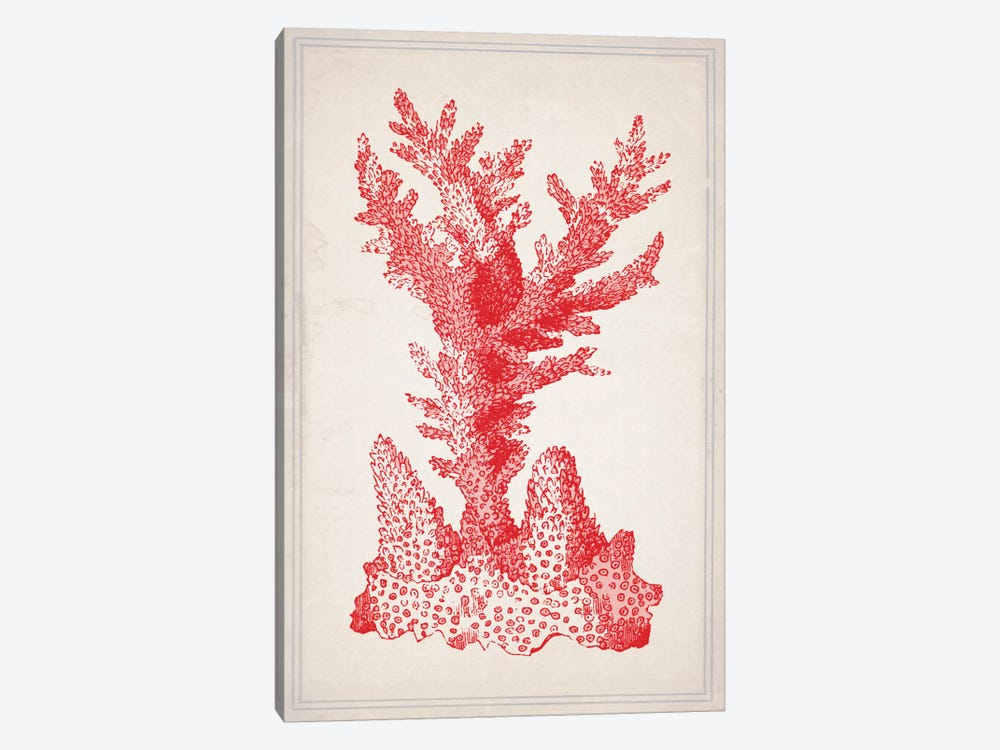 Red Coral I by Natasha Westcoat 1-piece Canvas Wall Art