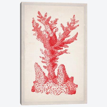 Red Coral I Canvas Print #NWE47} by Natasha Wescoat Canvas Artwork