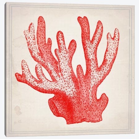 Red Coral III Canvas Print #NWE49} by Natasha Wescoat Canvas Art Print