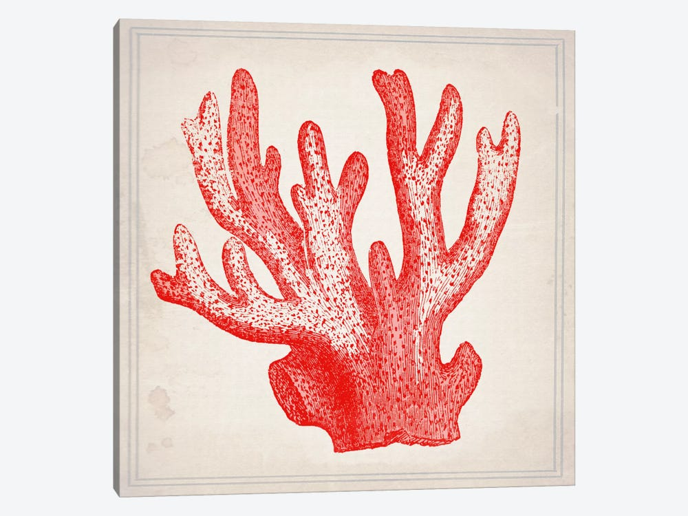 Red Coral III by Natasha Westcoat 1-piece Canvas Art