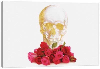 Rose And Skull Canvas Art Print