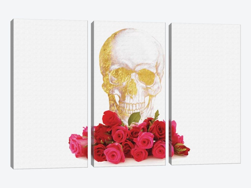 Rose And Skull by Natasha Westcoat 3-piece Canvas Art Print