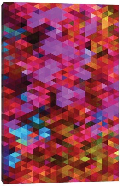 Synergy Canvas Art Print