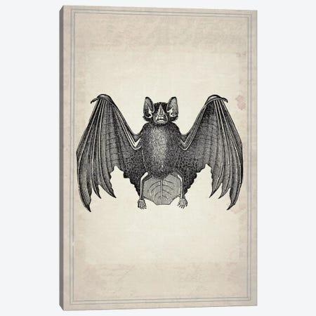 Bats II Canvas Print #NWE5} by Natasha Wescoat Art Print