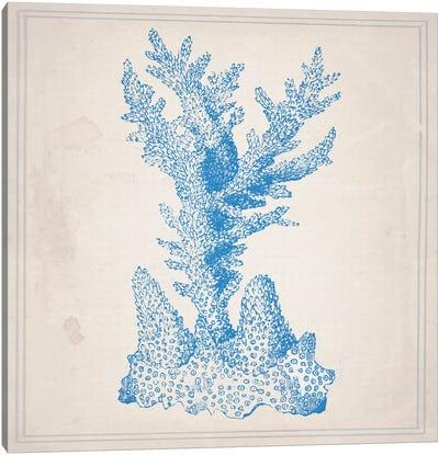 Blue Coral I Canvas Art Print