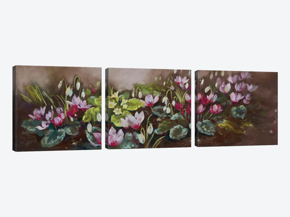 January- Cyclamen And Snowdrops by Nel Whatmore 3-piece Canvas Art