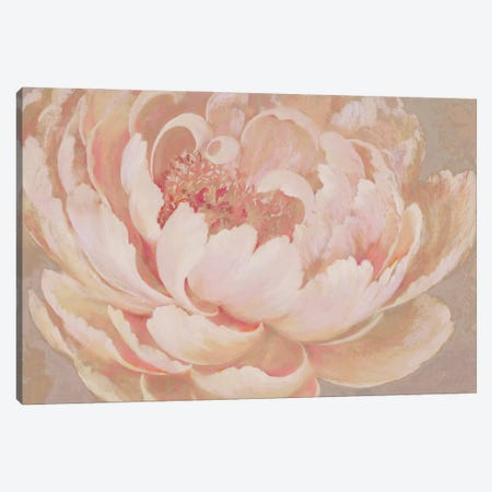 Coral Charm Canvas Print #NWM127} by Nel Whatmore Canvas Artwork