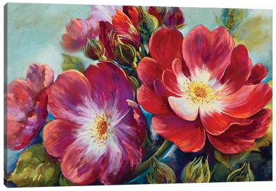 Greeting Rose From National Rose Collection Canvas Art Print