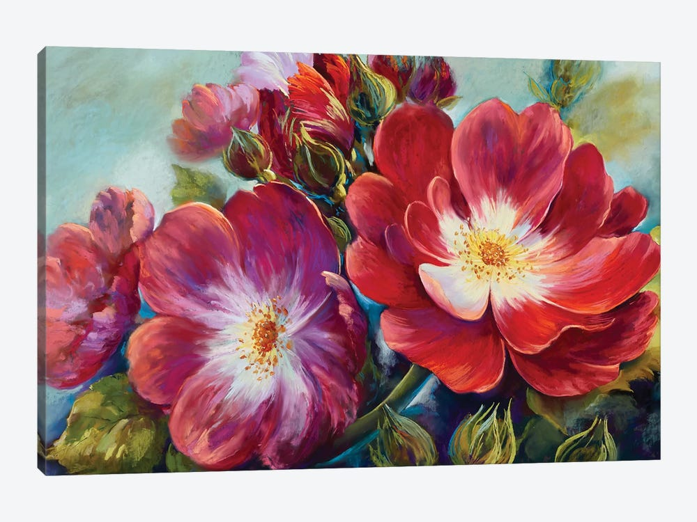 Greeting Rose From National Rose Collection by Nel Whatmore 1-piece Canvas Print