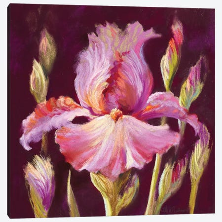 Her Arms Unfurled II Canvas Print #NWM29} by Nel Whatmore Art Print