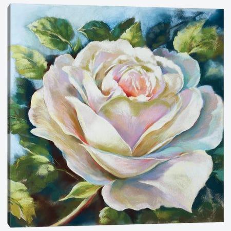 Aphrodite Canvas Print #NWM2} by Nel Whatmore Canvas Artwork
