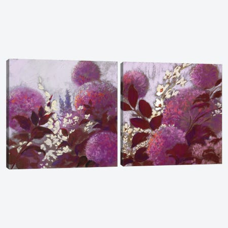 Pom-Poms Diptych Canvas Print Set #NWM2HSET003} by Nel Whatmore Art Print