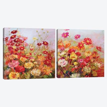 Rainbow All Day Diptych Canvas Print Set #NWM2HSET004} by Nel Whatmore Canvas Wall Art