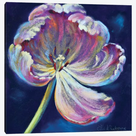 His Arms Unfurl Canvas Print #NWM31} by Nel Whatmore Canvas Art