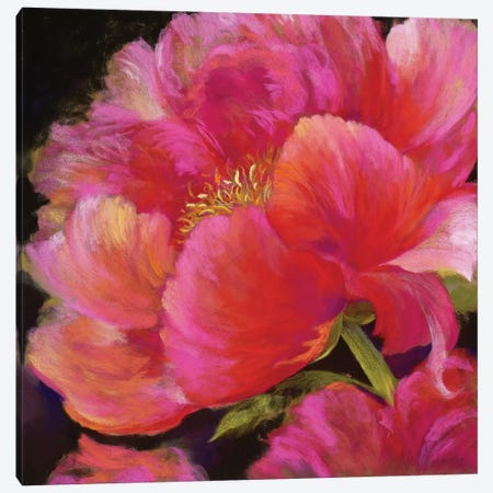 Hot Pink Canvas Print #NWM34} by Nel Whatmore Canvas Print
