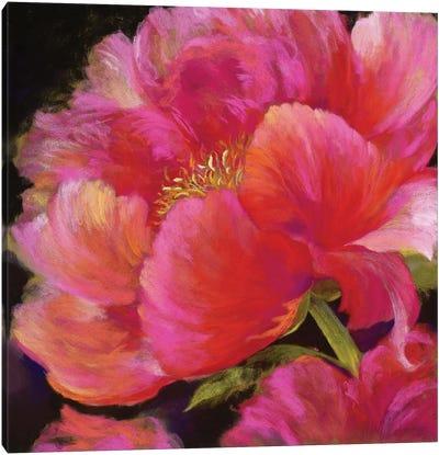 Hot Pink Canvas Art Print