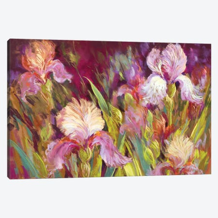 Irises All Day Canvas Print #NWM38} by Nel Whatmore Canvas Artwork