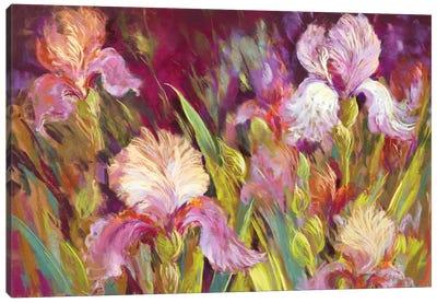 Irises All Day Canvas Art Print