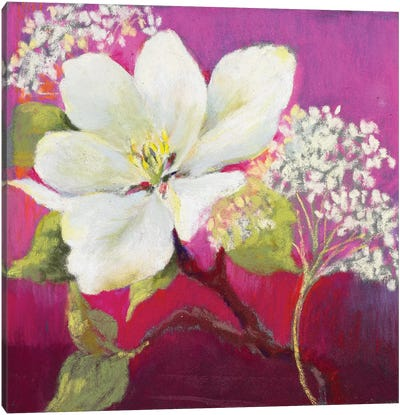 Apple Blossom I Canvas Art Print