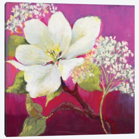 Apple Blossom I Canvas Print #NWM3} by Nel Whatmore Canvas Wall Art