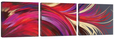 Riding The Wave Triptych Canvas Art Print