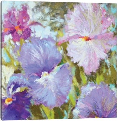 Little Irises Canvas Art Print