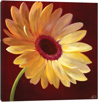 Little Miss Sunshine I Canvas Art Print