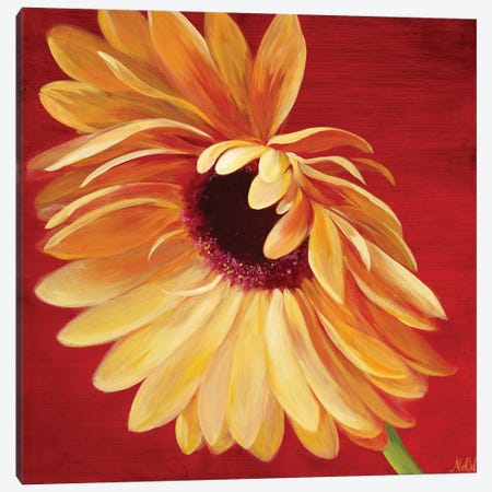 Little Miss Sunshine II Canvas Print #NWM44} by Nel Whatmore Canvas Art
