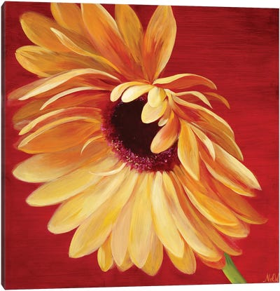 Little Miss Sunshine II Canvas Art Print
