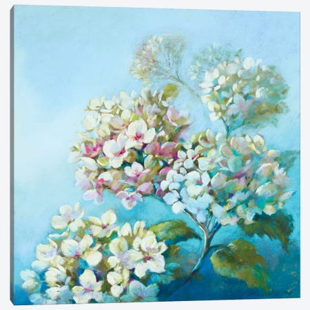 Perfect White Clouds Canvas Print #NWM57} by Nel Whatmore Canvas Art Print