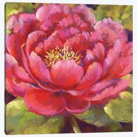 Petal Chalice Canvas Print #NWM58} by Nel Whatmore Canvas Art