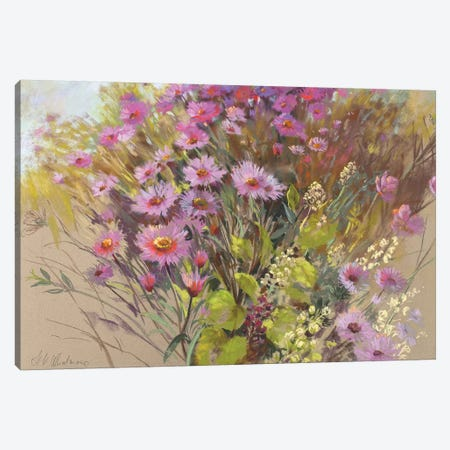 Pink Cloud Canvas Print #NWM59} by Nel Whatmore Canvas Artwork