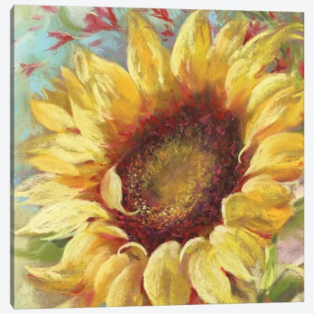 Sunny 3-Piece Canvas #NWM77} by Nel Whatmore Canvas Print