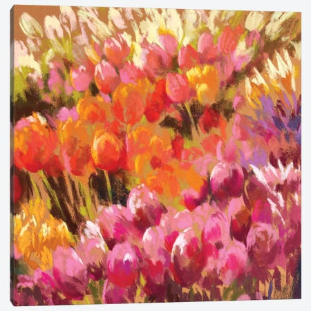Tantalising Tulips Canvas Print #NWM81} by Nel Whatmore Art Print