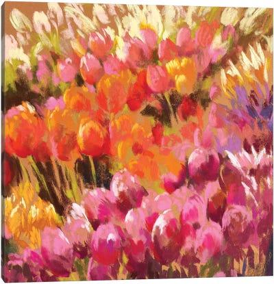 Tantalising Tulips Canvas Art Print