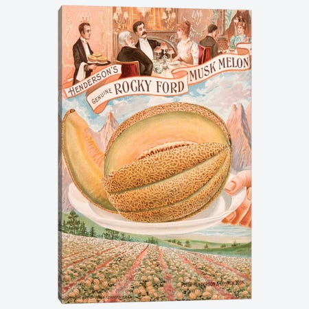 Genuine Rocky Ford Musk Melon Canvas Print #NYB11} by New York Botanical Garden Canvas Artwork