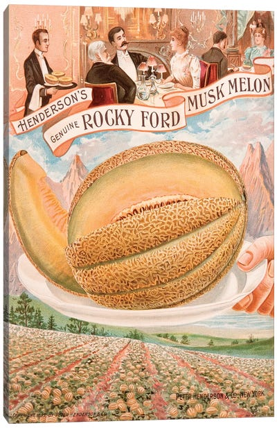 Henderson's Seed Catalogue Series: Genuine Rocky Ford Musk Melon Canvas Print #NYB11