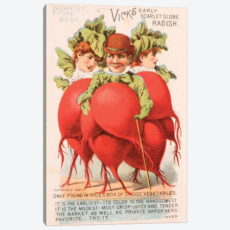 """Radish People"" Advertisement Card, 1880 Canvas Print #NYB1} by New York Botanical Garden Canvas Art Print"