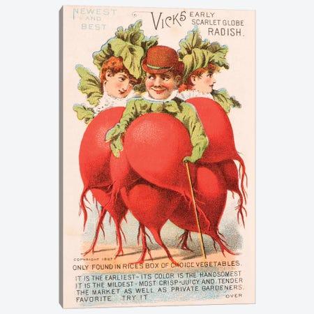 """Radish People"" Advertisement Card, 1880 Canvas Print #NYB1} by New York Botanical Garden Portfolio Canvas Art Print"