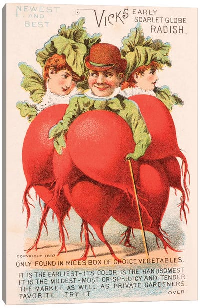 """Radish People"" Advertisement Card, 1880 Canvas Art Print"